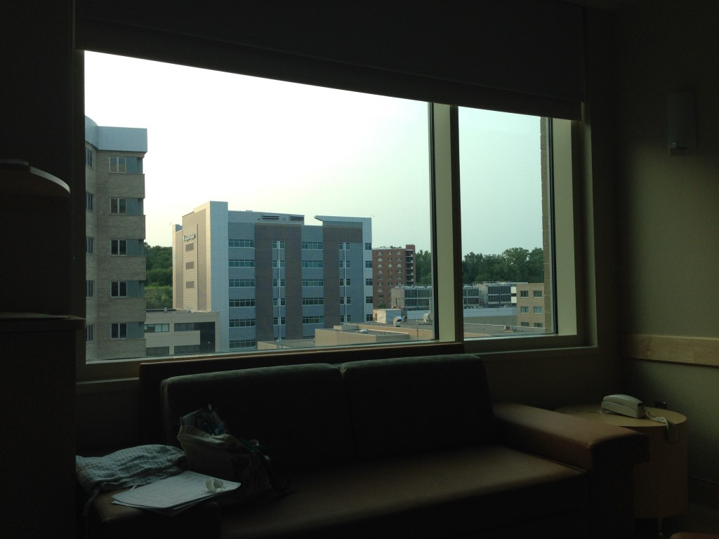 Take Me to Regions Hospital – the view out my window back in St. Paul. Even though I work here I couldn't score a river view room across the hall.