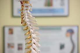 No steroids for acute spinal cord injury